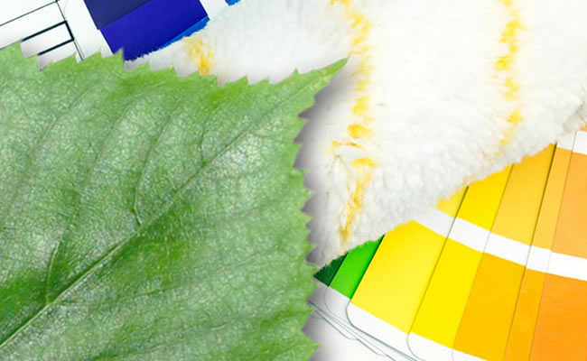 Eco-Friendly Painting services Tamworth